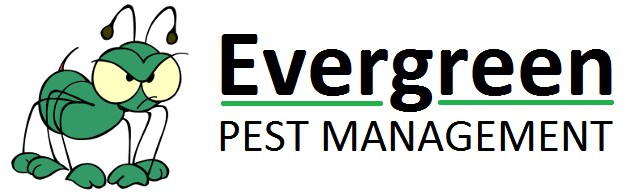Evergreen Pest Management business logo